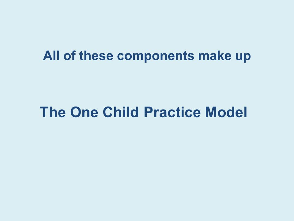 All of these components make up The One Child Practice Model