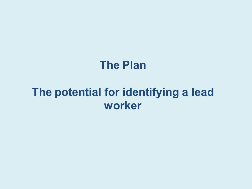 The Plan The potential for identifying a lead worker