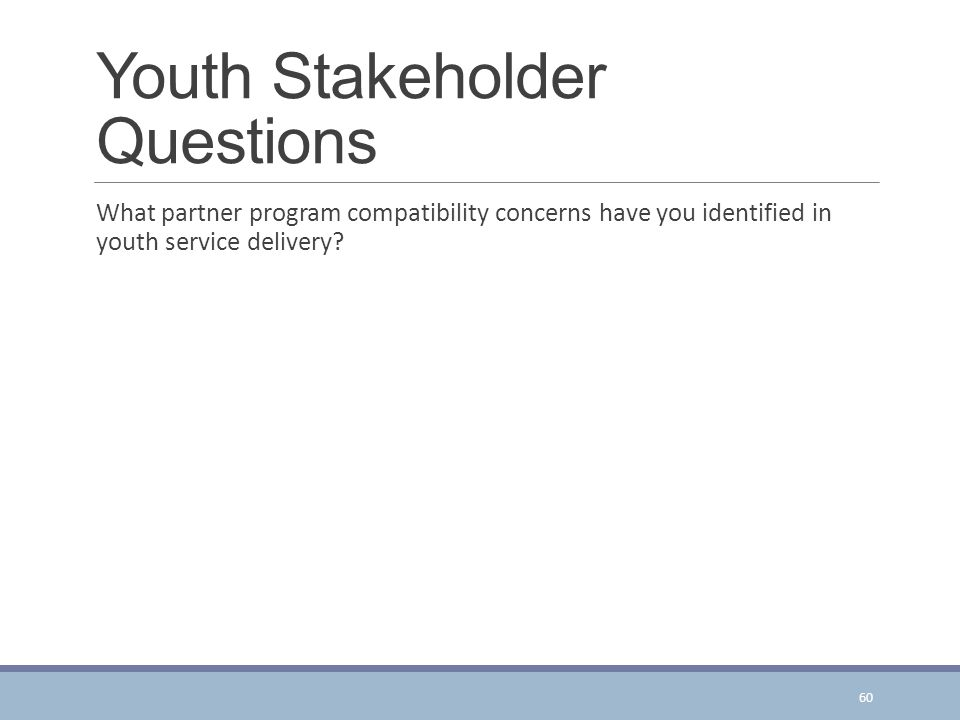 Youth Stakeholder Questions What partner program compatibility concerns have you identified in youth service delivery.