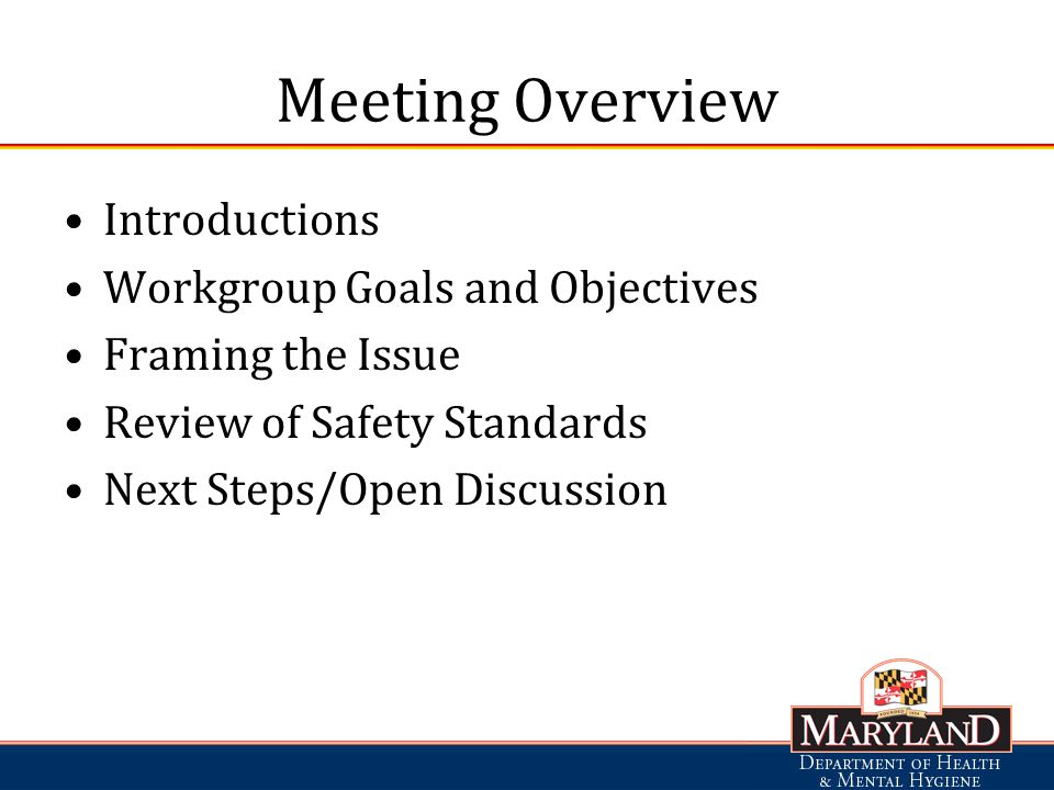 Meeting Overview Introductions Workgroup Goals and Objectives Framing the Issue Review of Safety Standards Next Steps/Open Discussion