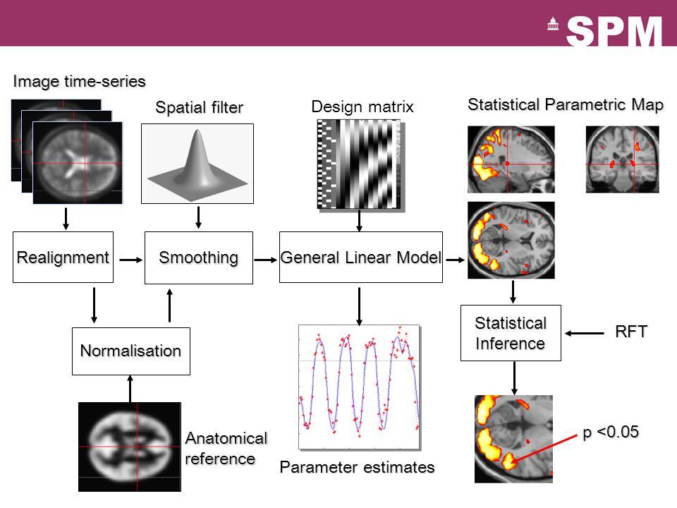 Normalisation Statistical Parametric Map Image time-series Parameter estimates General Linear Model RealignmentSmoothing Design matrix Anatomical refe