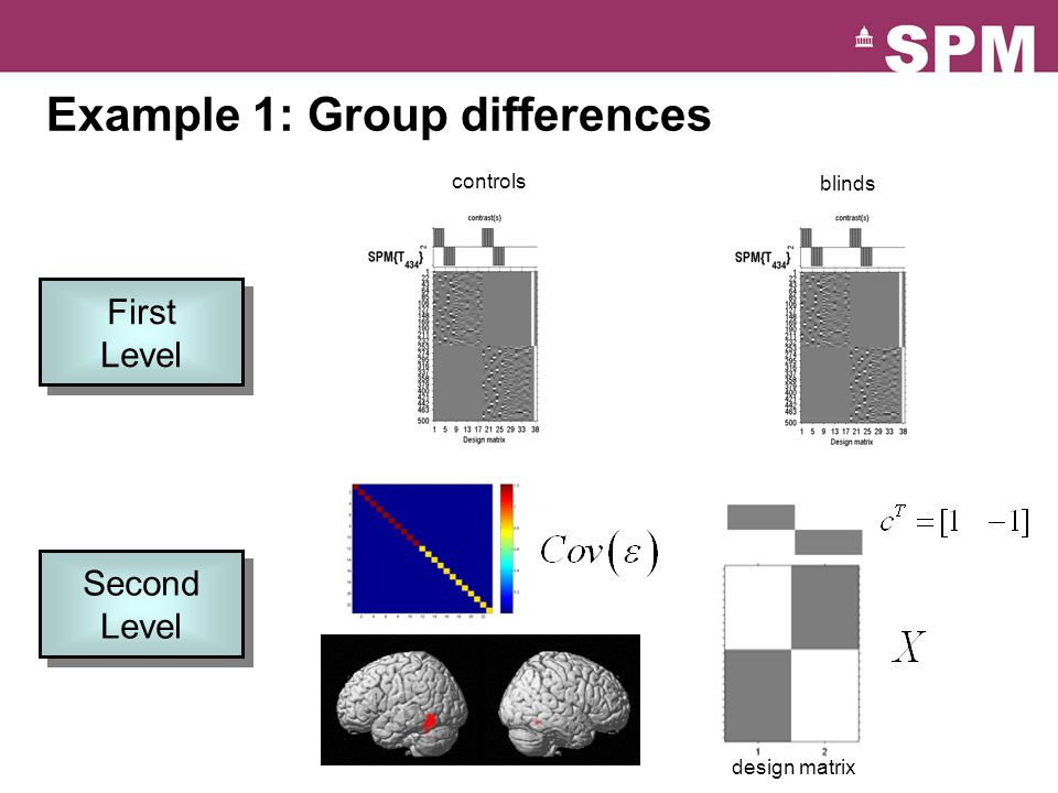 controls blinds design matrix Example 1: Group differences First Level First Level Second Level Second Level