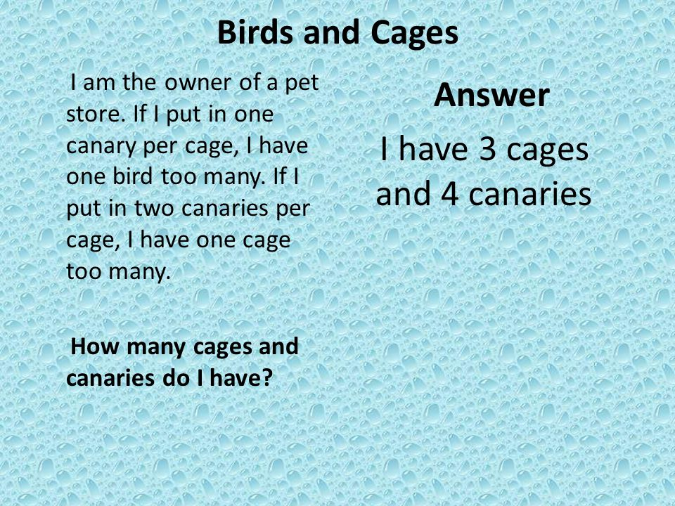 Birds and Cages I am the owner of a pet store.