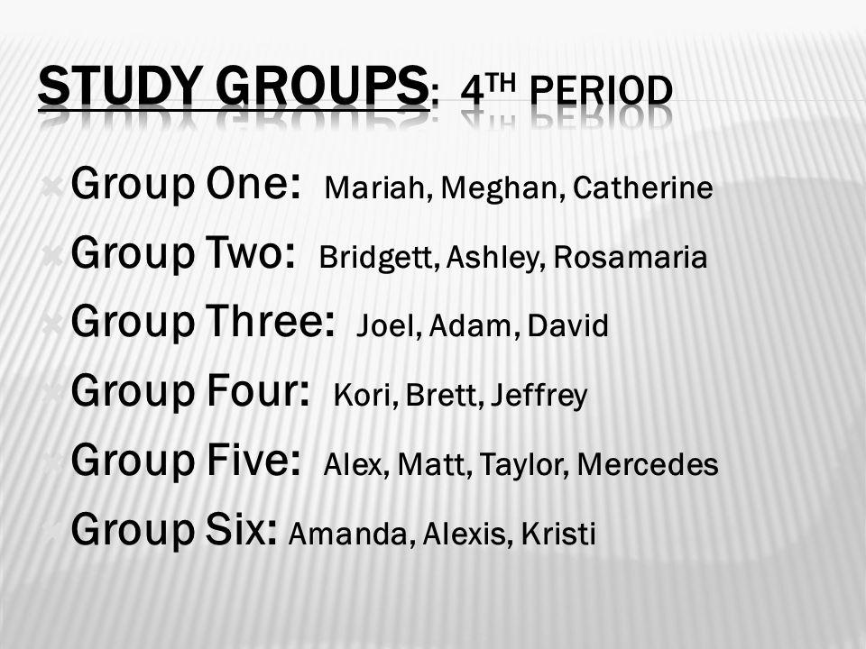  Group One: Mariah, Meghan, Catherine  Group Two: Bridgett, Ashley, Rosamaria  Group Three: Joel, Adam, David  Group Four: Kori, Brett, Jeffrey  Group Five: Alex, Matt, Taylor, Mercedes  Group Six: Amanda, Alexis, Kristi