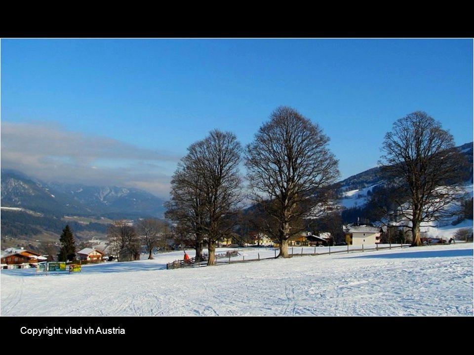 Copyright: vlad vh Austria