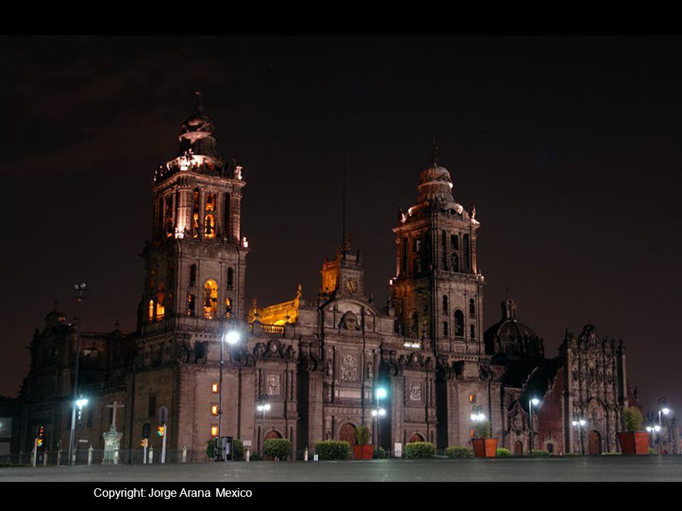 Copyright: Jorge Arana Mexico