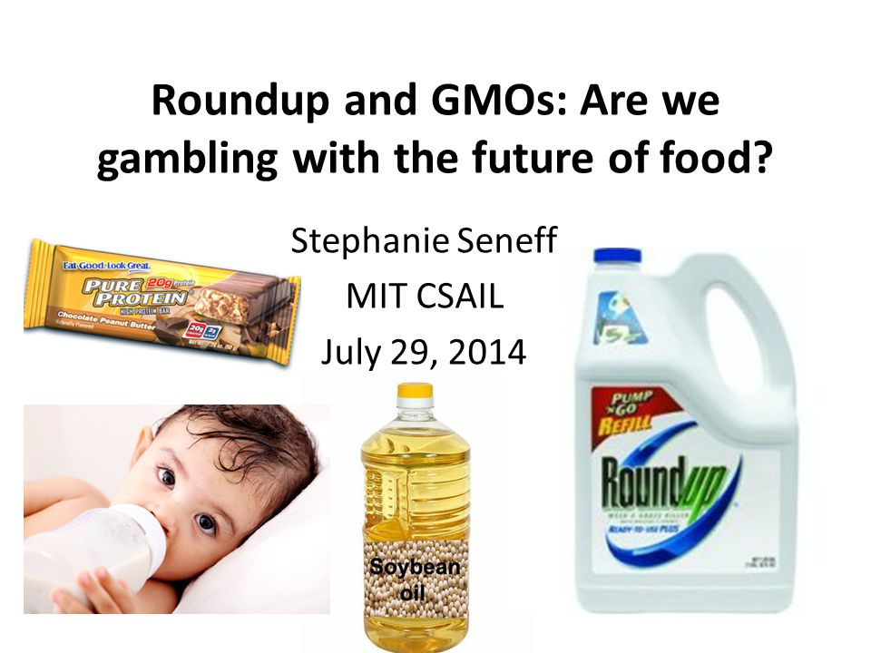 Roundup and GMOs: Are we gambling with the future of food? Stephanie Seneff MIT CSAIL July 29, 2014