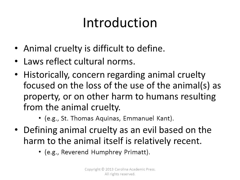 Introduction Animal cruelty is difficult to define.