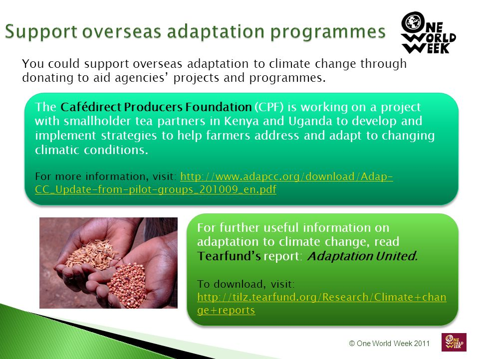 © One World Week 2011 The Cafédirect Producers Foundation (CPF) is working on a project with smallholder tea partners in Kenya and Uganda to develop and implement strategies to help farmers address and adapt to changing climatic conditions.