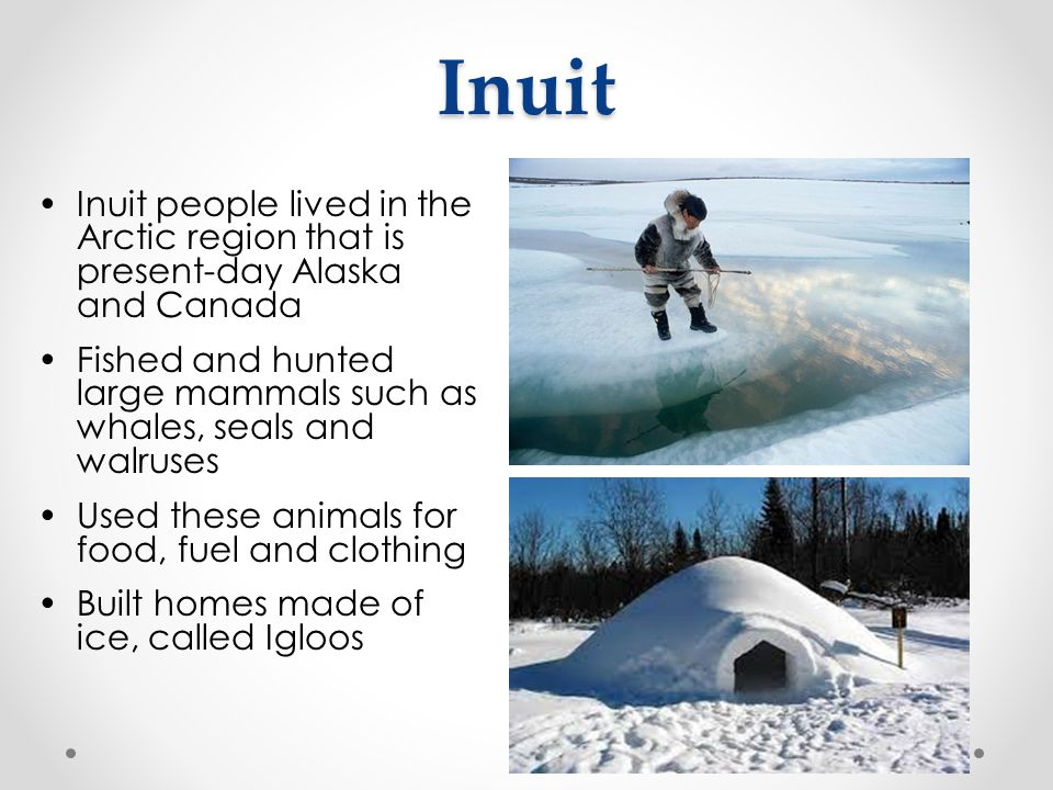 Inuit Inuit people lived in the Arctic region that is present-day Alaska and Canada Fished and hunted large mammals such as whales, seals and walruses