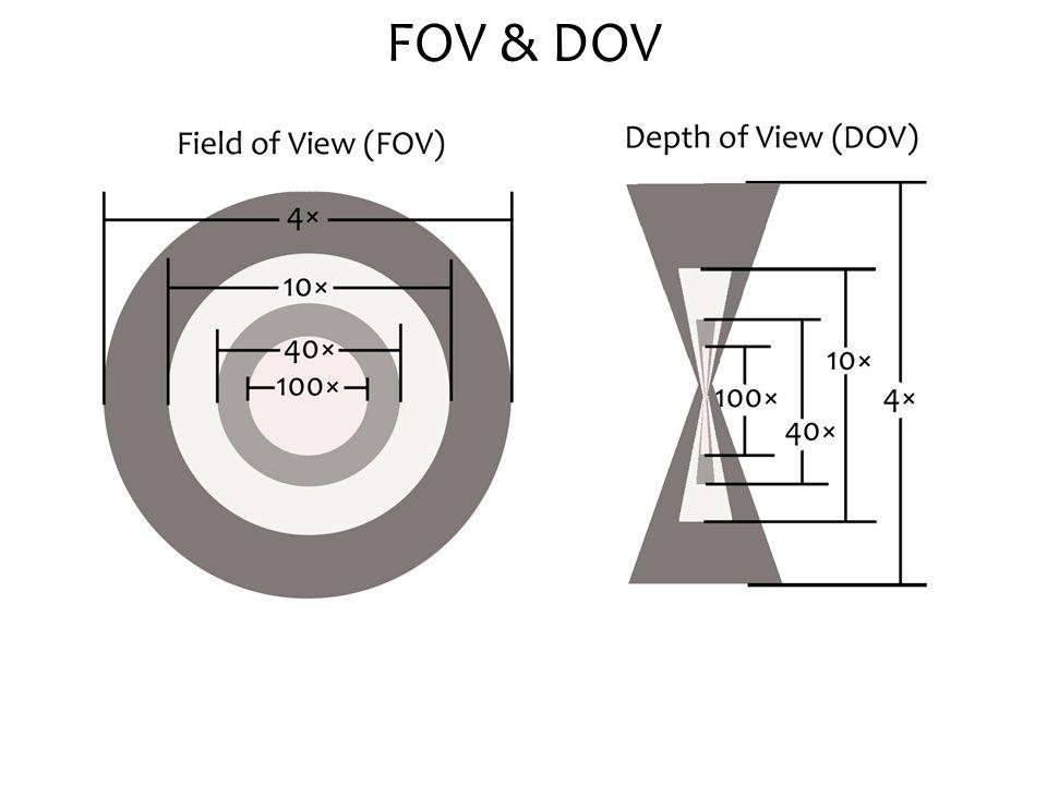 FOV & DOV