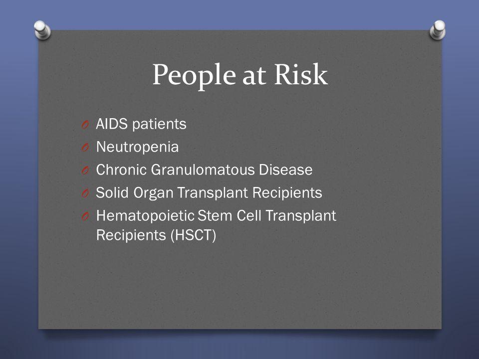 People at Risk O AIDS patients O Neutropenia O Chronic Granulomatous Disease O Solid Organ Transplant Recipients O Hematopoietic Stem Cell Transplant
