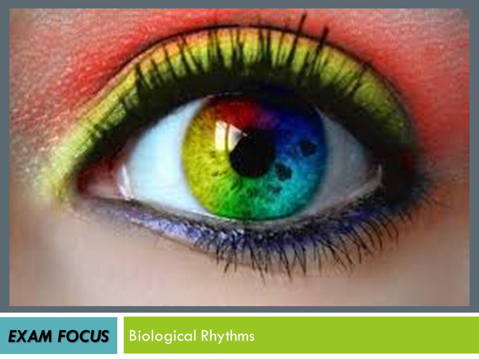 EXAM FOCUS Biological Rhythms