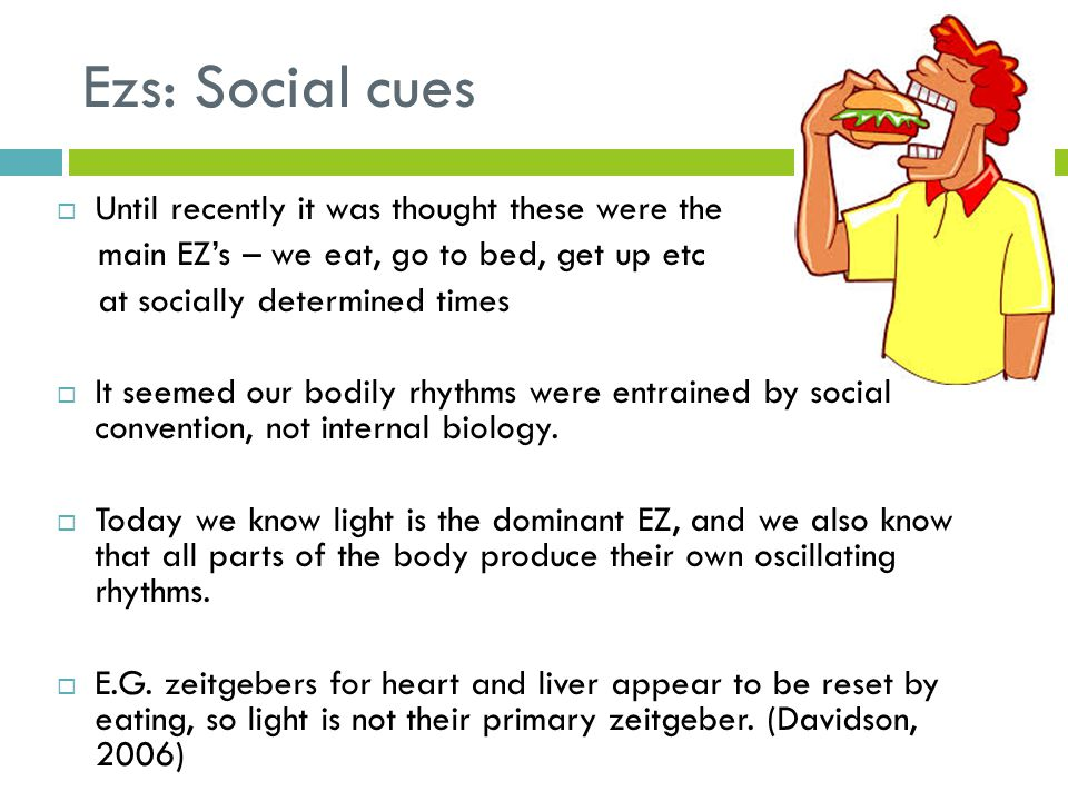 Ezs: Social cues  Until recently it was thought these were the main EZ's – we eat, go to bed, get up etc at socially determined times  It seemed our