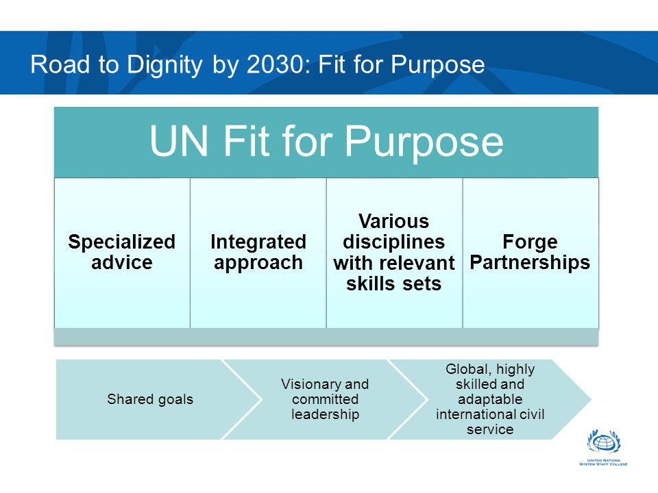 UN Fit for Purpose Specialized advice Integrated approach Various disciplines with relevant skills sets Forge Partnerships Road to Dignity by 2030: Fi