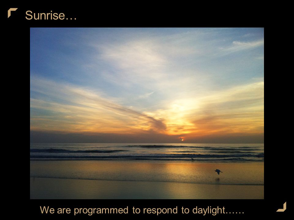 Sunrise… We are programmed to respond to daylight……