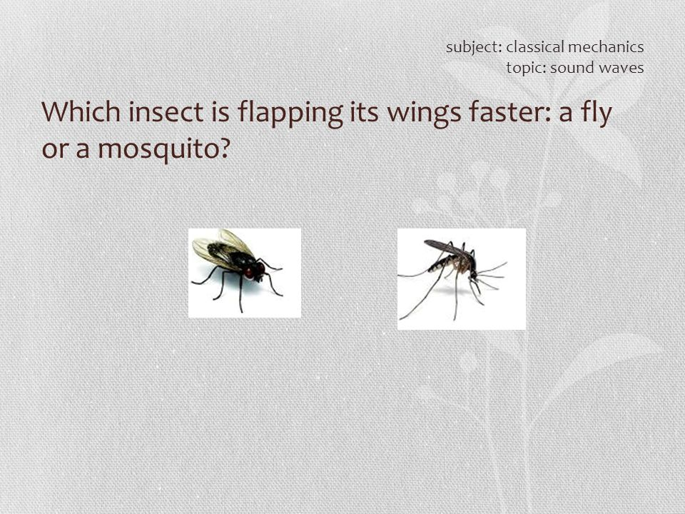 Which insect is flapping its wings faster: a fly or a mosquito? subject: classical mechanics topic: sound waves