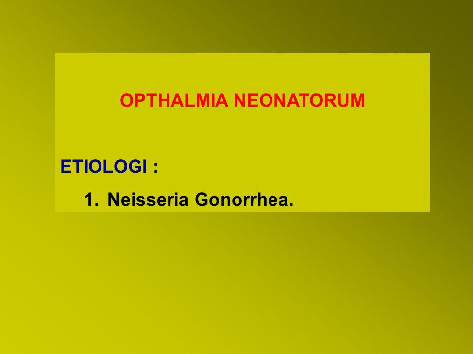 OPTHALMIA NEONATORUM ETIOLOGI : 1.Neisseria Gonorrhea.