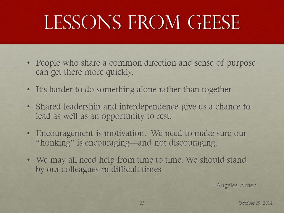 Lessons from geese People who share a common direction and sense of purpose can get there more quickly.People who share a common direction and sense of purpose can get there more quickly.