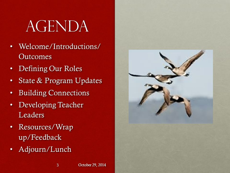 Agenda Welcome/Introductions/ Outcomes Welcome/Introductions/ Outcomes Defining Our Roles Defining Our Roles State & Program Updates State & Program Updates Building Connections Building Connections Developing Teacher Leaders Developing Teacher Leaders Resources/Wrap up/Feedback Resources/Wrap up/Feedback Adjourn/Lunch Adjourn/Lunch Welcome/Introductions/ Outcomes Welcome/Introductions/ Outcomes Defining Our Roles Defining Our Roles State & Program Updates State & Program Updates Building Connections Building Connections Developing Teacher Leaders Developing Teacher Leaders Resources/Wrap up/Feedback Resources/Wrap up/Feedback Adjourn/Lunch Adjourn/Lunch October 29, 2014 3
