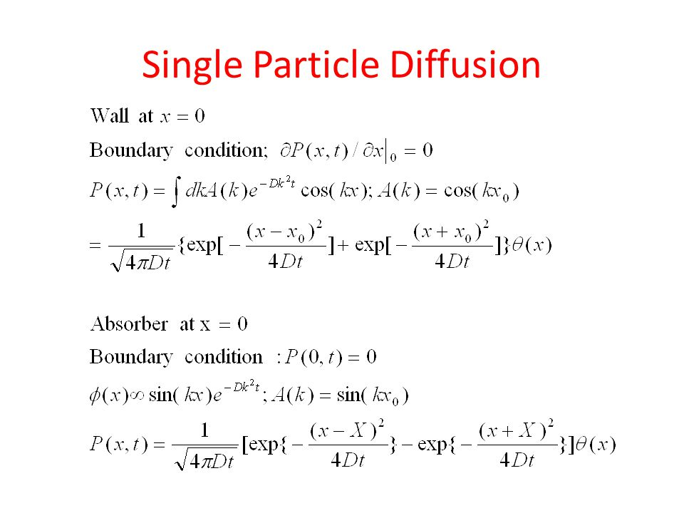 Diffusion of Interacting Particles in One Dimension Outline 1.