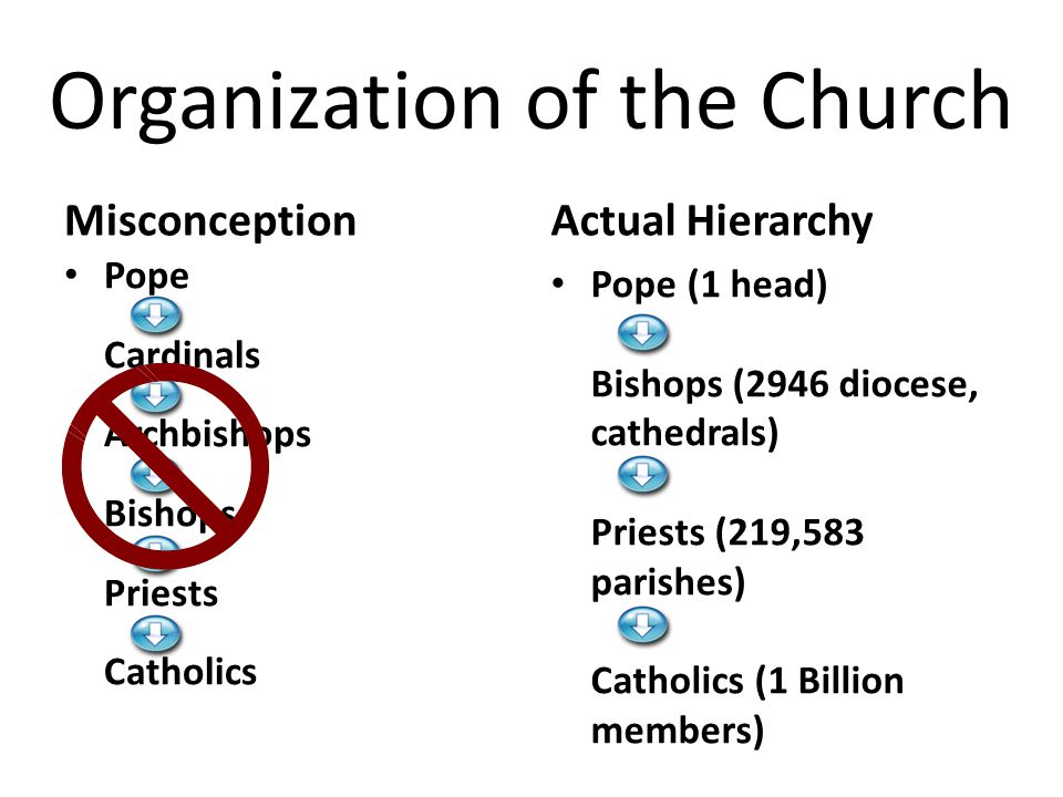 Organization of the Church Misconception Pope Cardinals Archbishops Bishops Priests Catholics Actual Hierarchy Pope (1 head) Bishops (2946 diocese, cathedrals) Priests (219,583 parishes) Catholics (1 Billion members)