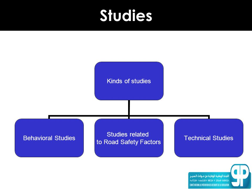 Studies Kinds of studies Behavioral Studies Studies related to Road Safety Factors Technical Studies