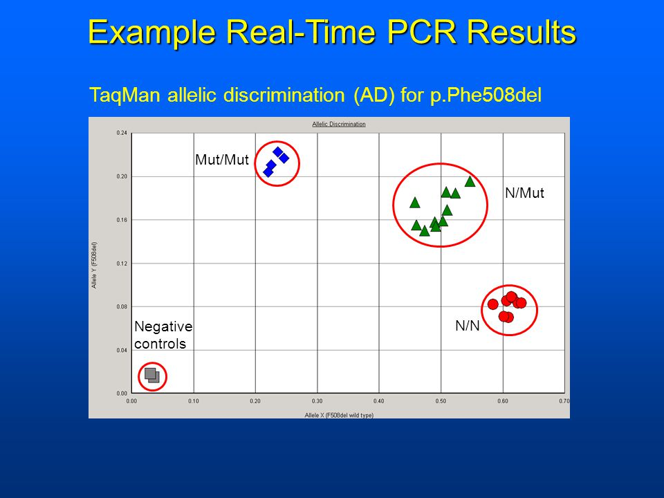Negative controls N/N N/Mut Mut/Mut Example Real-Time PCR Results TaqMan allelic discrimination (AD) for p.Phe508del