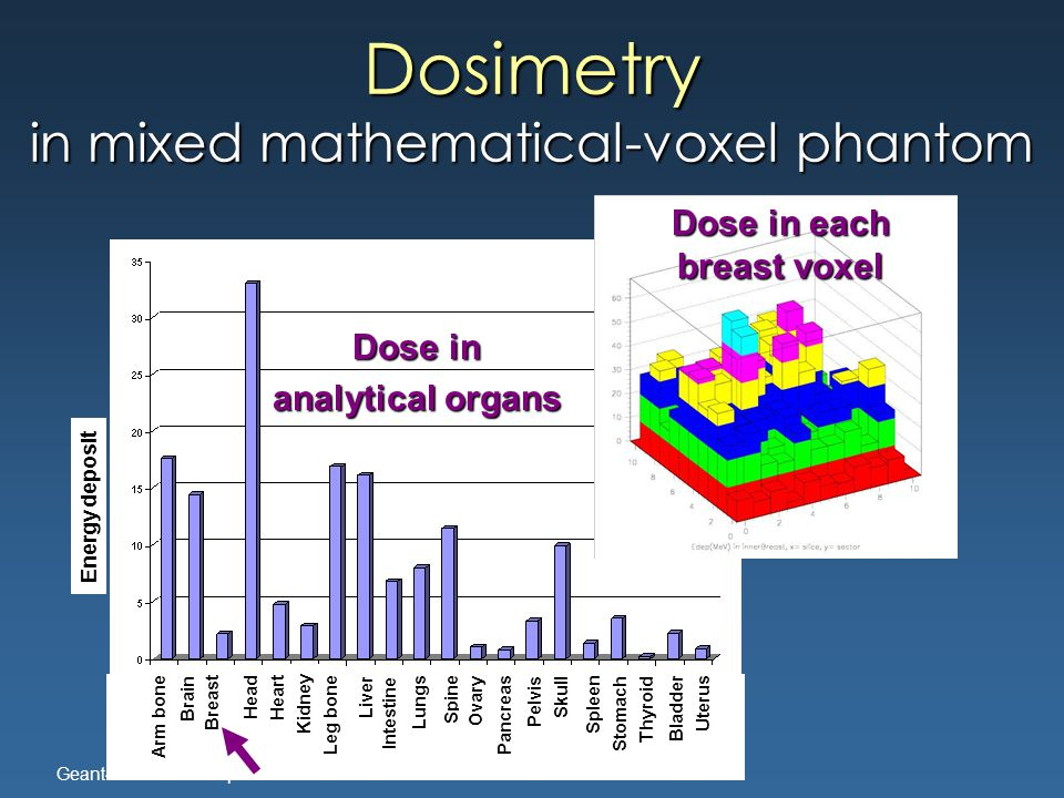Geant4-Genova Group Dosimetry in mixed mathematical-voxel phantom Energy deposit Arm bone Brain Breast Head Heart Kidney Leg bone Liver Intestine Lungs Spine Ovary Pancreas Pelvis Skull Spleen Stomach Thyroid Bladder Uterus Dose in analytical organs Dose in each breast voxel