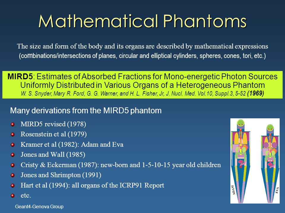 Geant4-Genova Group Mathematical Phantoms Many derivations from the MIRD5 phantom MIRD5 revised (1978) Rosenstein et al (1979) Kramer et al (1982): Adam and Eva Jones and Wall (1985) Cristy & Eckerman (1987): new-born and 1-5-10-15 year old children Jones and Shrimpton (1991) Hart et al (1994): all organs of the ICRP91 Report etc.