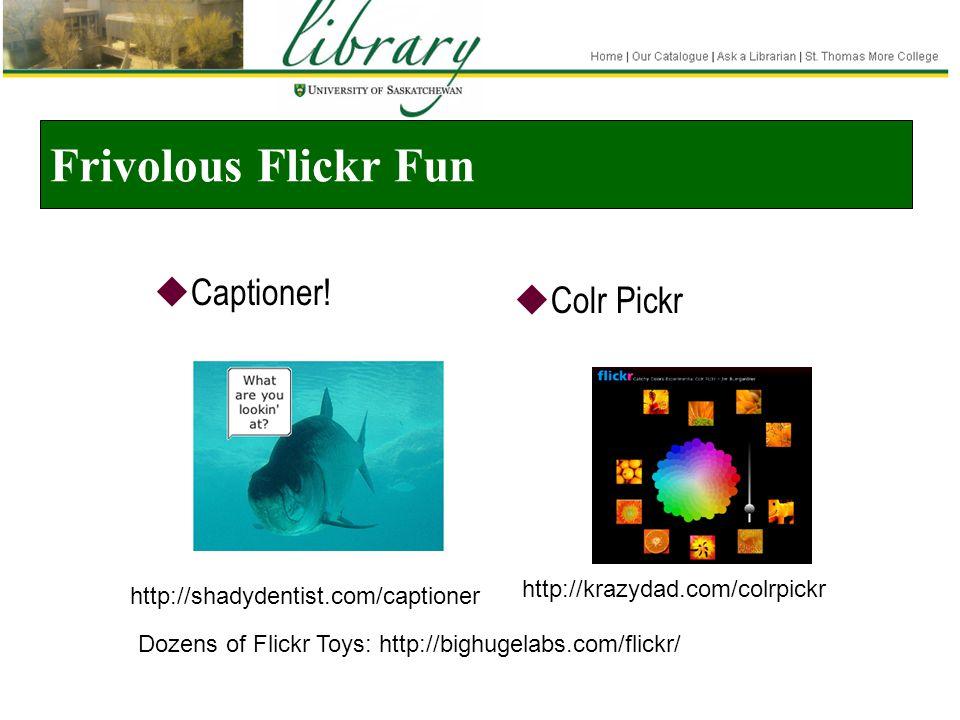 Frivolous Flickr Fun  Captioner.