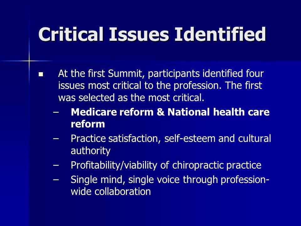 The Chiropractic Summit Chiropractic Summit is a work in progress.