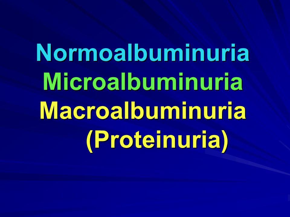 Normoalbuminuria Microalbuminuria Macroalbuminuria (Proteinuria)