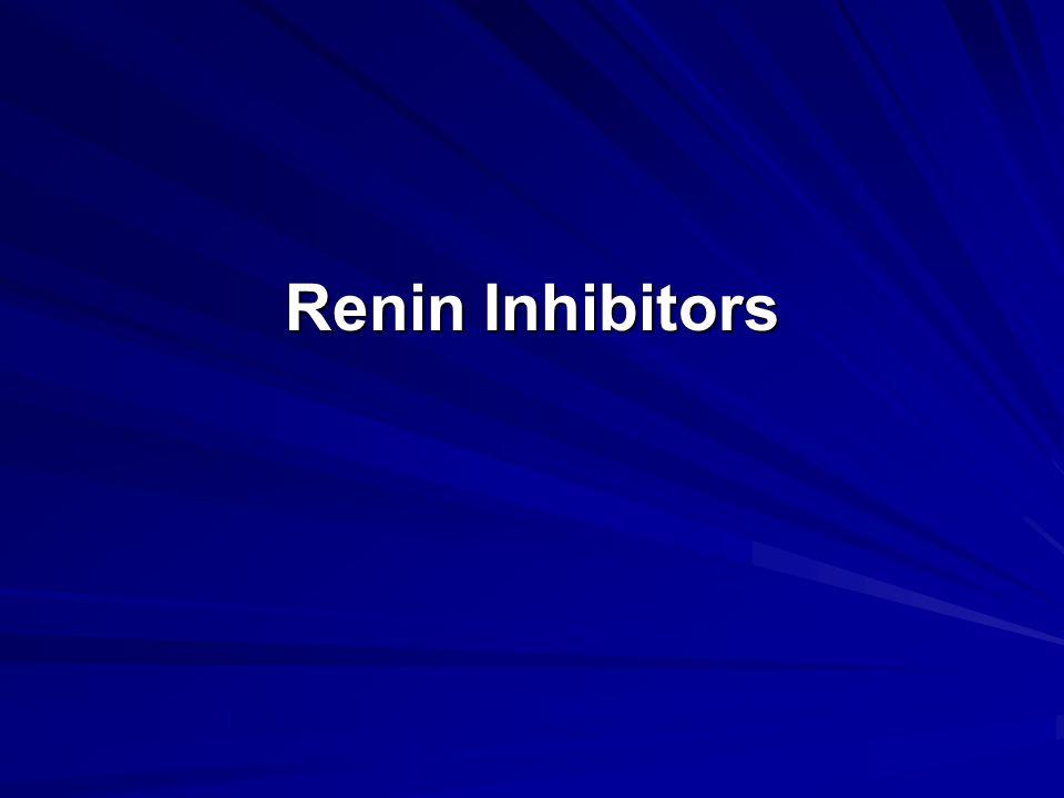 Renin Inhibitors