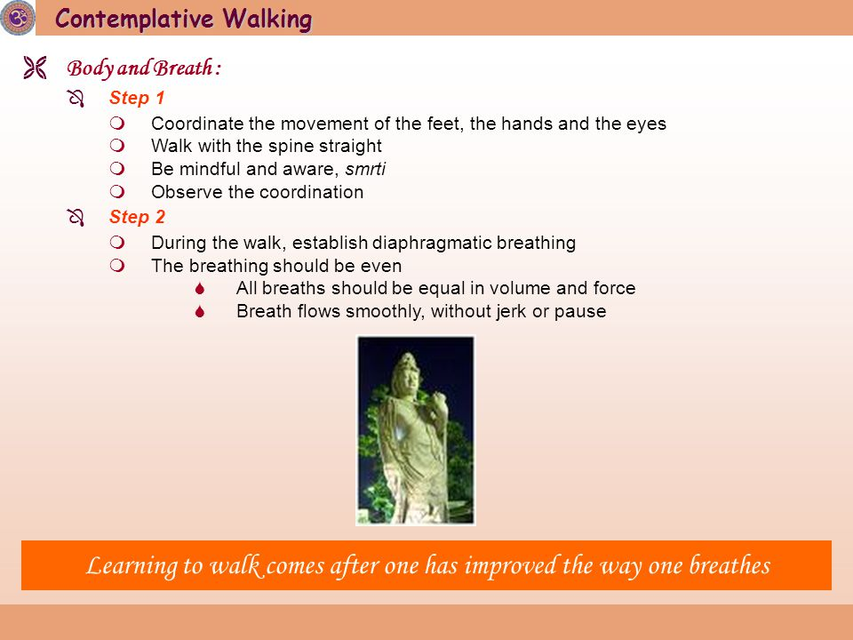 Contemplative Walking  Body and Breath :  Step 1  Coordinate the movement of the feet, the hands and the eyes  Walk with the spine straight  Be mindful and aware, smrti  Observe the coordination  Step 2  During the walk, establish diaphragmatic breathing  The breathing should be even  All breaths should be equal in volume and force  Breath flows smoothly, without jerk or pause Learning to walk comes after one has improved the way one breathes