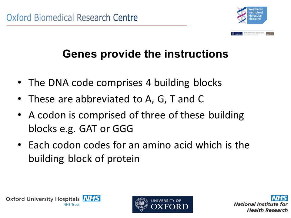 Genes provide the instructions The DNA code comprises 4 building blocks These are abbreviated to A, G, T and C A codon is comprised of three of these building blocks e.g.