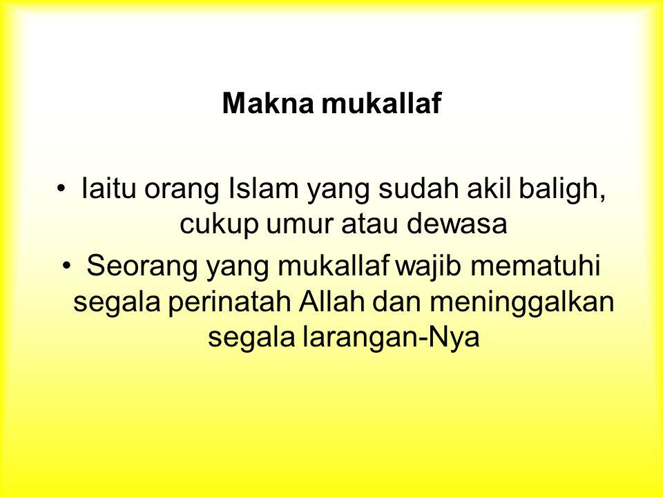 Makna mukallaf Iaitu orang Islam yang sudah akil baligh, cukup umur atau dewasa Seorang yang mukallaf wajib mematuhi segala perinatah Allah dan meninggalkan segala larangan-Nya