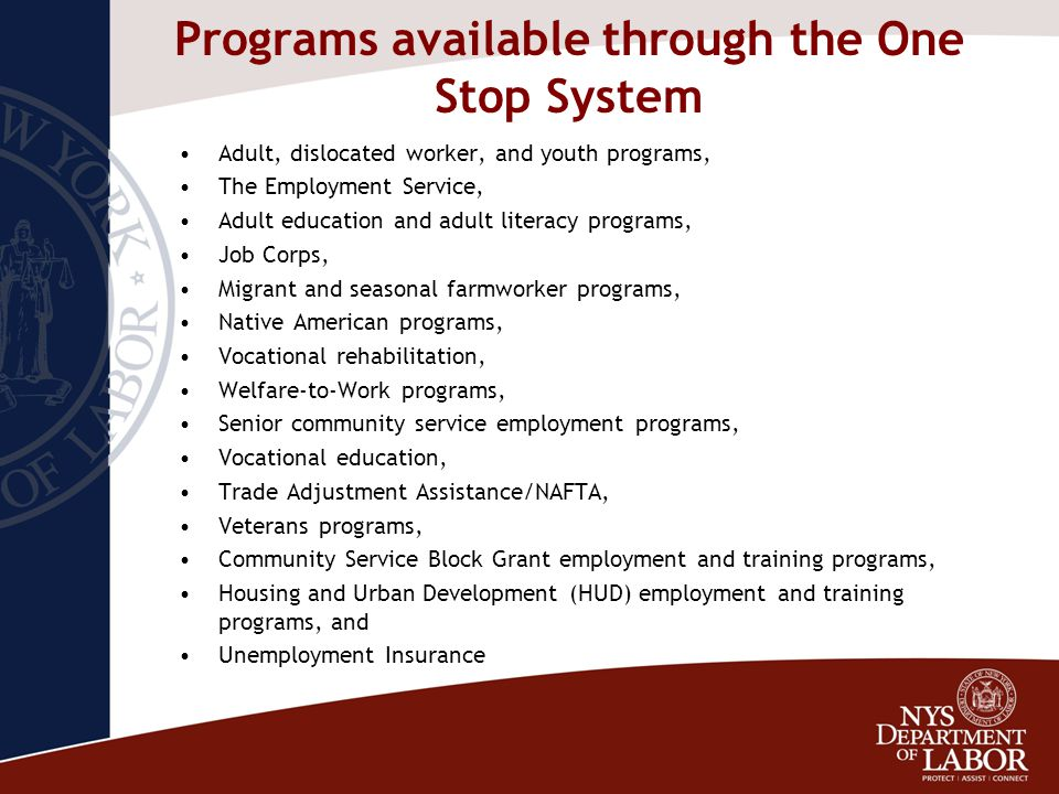 Programs available through the One Stop System Adult, dislocated worker, and youth programs, The Employment Service, Adult education and adult literac