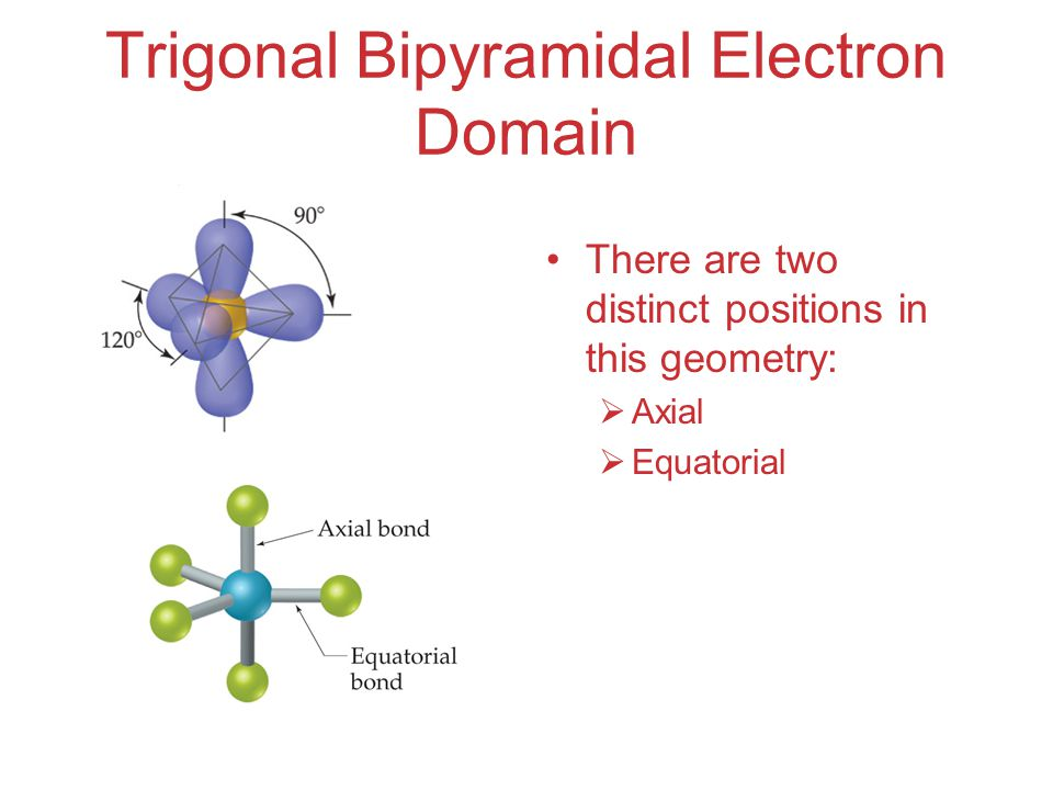 Trigonal Bipyramidal Electron Domain There are two distinct positions in this geometry:  Axial  Equatorial