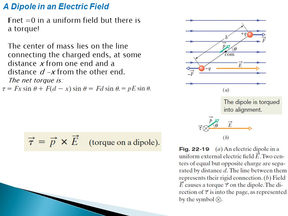 A Dipole in an Electric Field: Potential Energy Potential energy can be associated with the orientation of an electric dipole in an electric field.