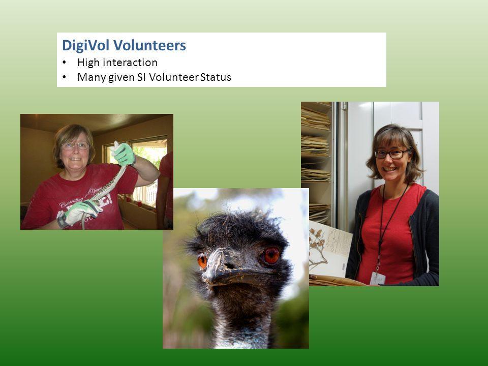 DigiVol Volunteers High interaction Many given SI Volunteer Status