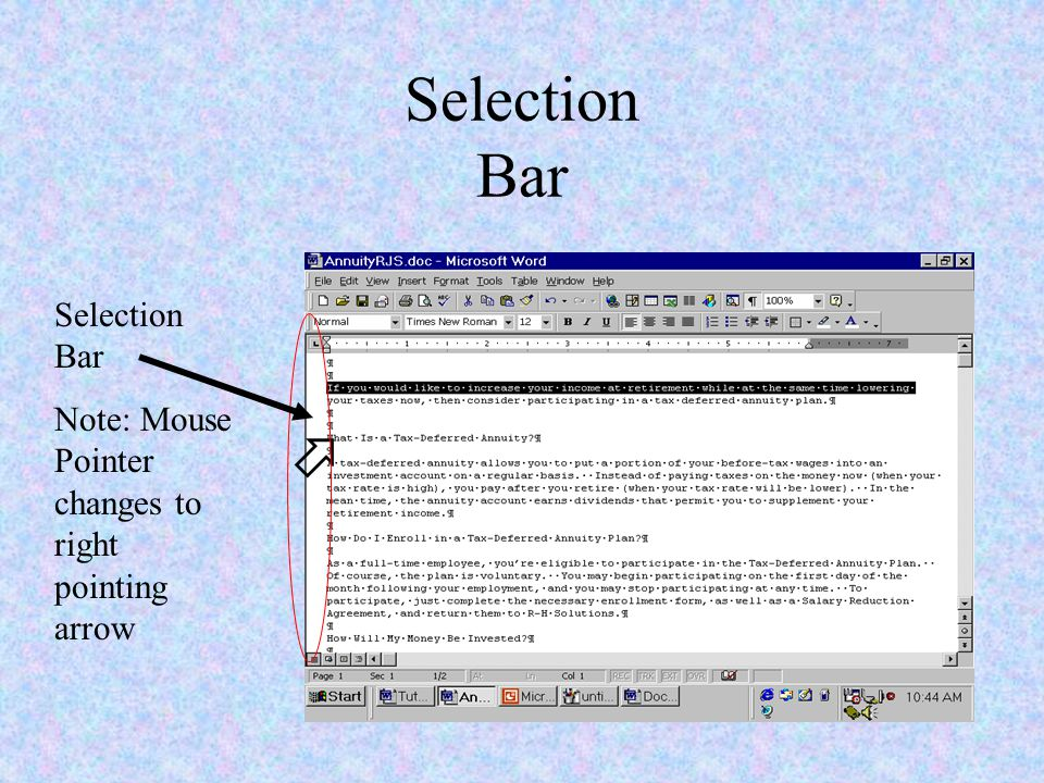 Selection Bar  Note: Mouse Pointer changes to right pointing arrow