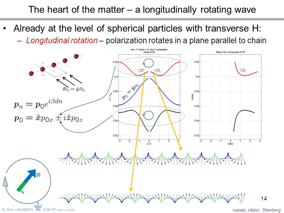 The heart of the matter – a longitudinally rotating wave Already at the level of spherical particles with transverse H: –Longitudinal rotation – polarization rotates in a plane parallel to chain 14 Hadad, Mazor, Steinberg