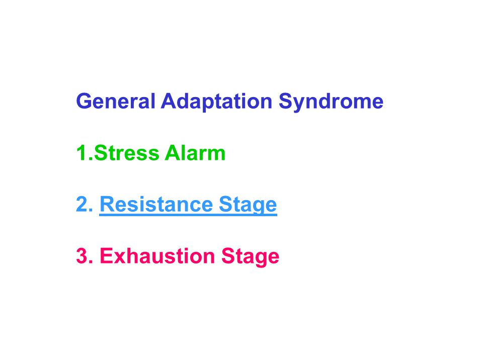 General Adaptation Syndrome 1.Stress Alarm 2. Resistance Stage 3. Exhaustion Stage