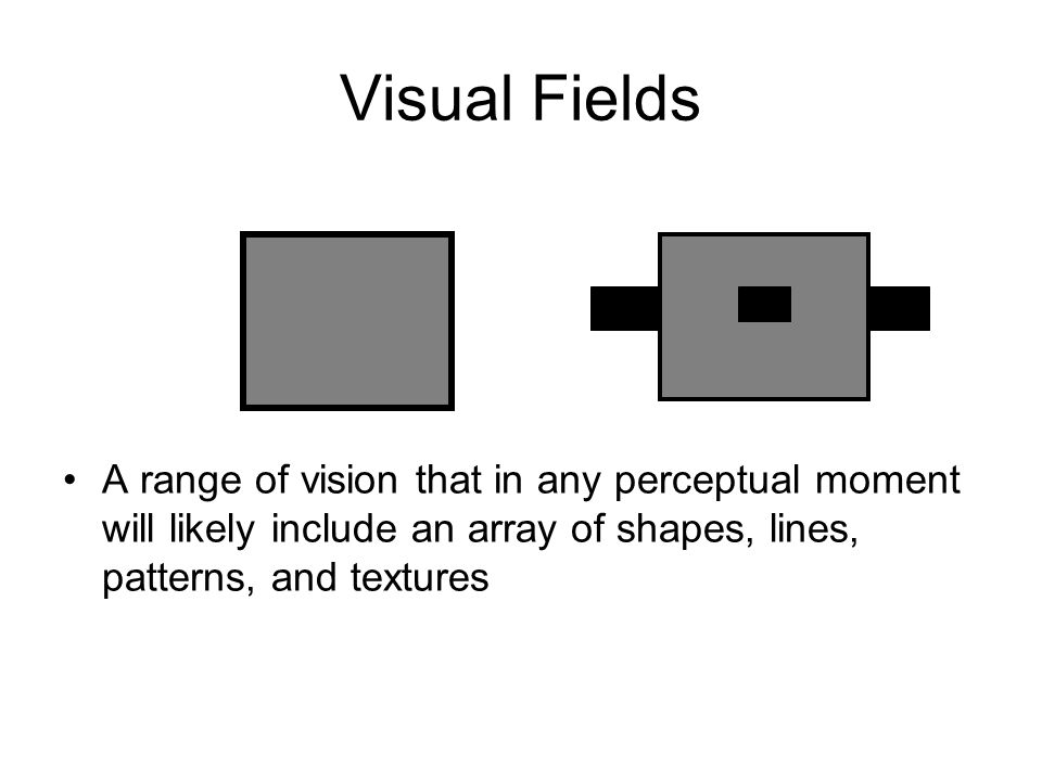 Visual Fields A range of vision that in any perceptual moment will likely include an array of shapes, lines, patterns, and textures