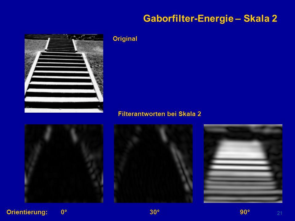20 Gaborfilter-Energie – Skala 1 Orientierung:0°30°90° Original Filterantworten bei Skala 1