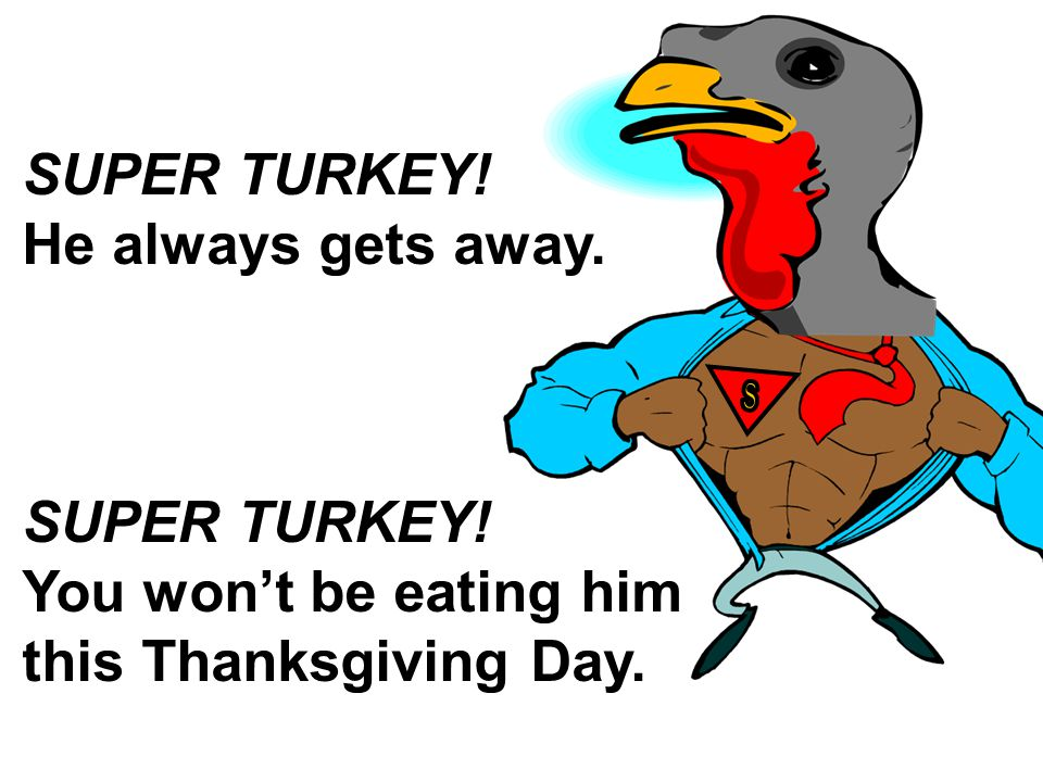 SUPER TURKEY! He always gets away. SUPER TURKEY! You won't be eating him this Thanksgiving Day.
