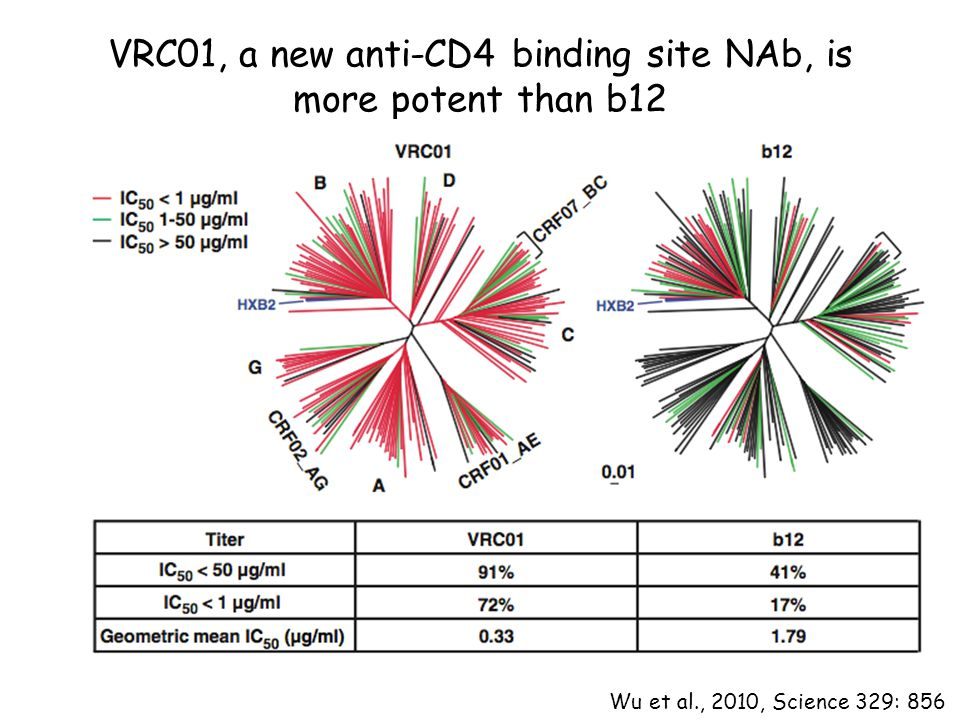 VRC01, a new anti-CD4 binding site NAb, is more potent than b12 Wu et al., 2010, Science 329: 856