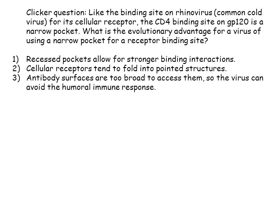 Clicker question: Like the binding site on rhinovirus (common cold virus) for its cellular receptor, the CD4 binding site on gp120 is a narrow pocket.