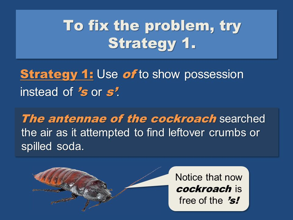 The cockroach's antennae searched the air as it attempted to find leftover crumbs or spilled soda.